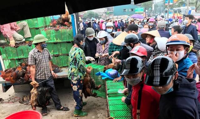 Sau rau củ quả, đến lượt giải cứu gà đồi Hải Dương 55.000 đồng/kg - 1