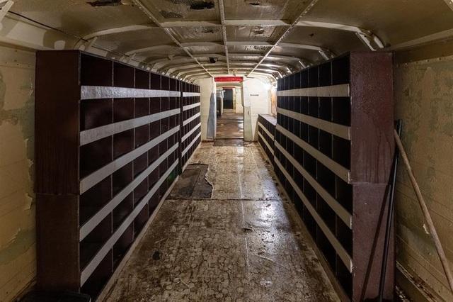 Cụ ông chi tiền mua hàng chục xe buýt đem chôn làm hầm trú ẩn - 11