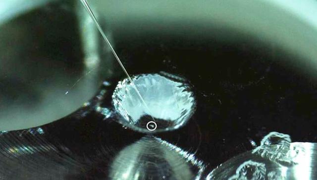 Tìm thấy vật chất hữu cơ liên quan đến sự sống trên bề mặt tiểu hành tinh - 1