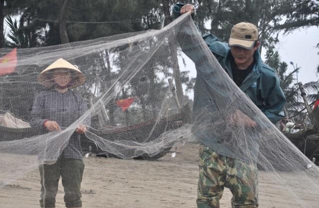 Kiếm tiền triệu mỗi ngày nhờ thu hoạch cá trích - 1