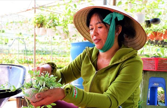 Chuyện về nữ nông dân tỷ phú làm giàu từ cây cảnh treo - 1