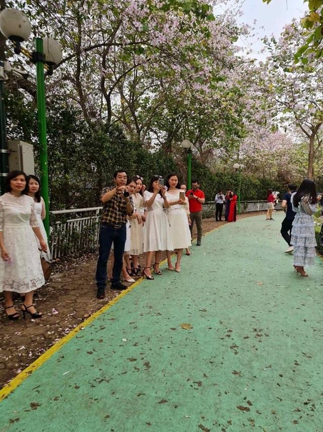 Hàng nghìn người tụ tập chụp ảnh hoa ban tại khu đô thị Nam Thăng Long - 4
