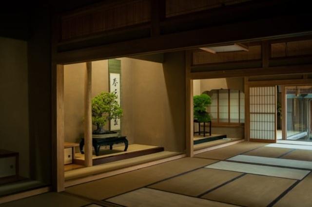 Nơi thỏa niềm đam mê của những người yêu bonsai - 7