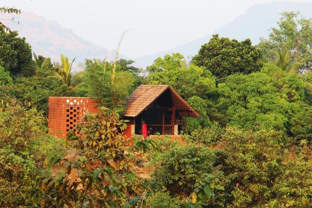 Cặp vợ chồng 60 tuổi chi 300 triệu đồng làm nhà vườn để tận hưởng tuổi già - 1