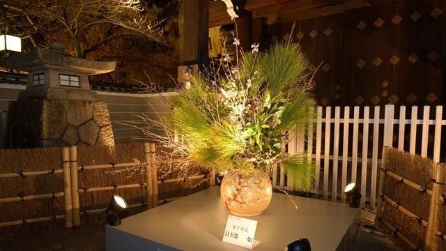 Tháng ba, về Kyoto bước đi trên con đường hoa và ánh sáng - 2