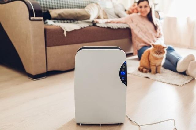 Đối phó thời tiết nồm ẩm: Mua máy hút ẩm, hay chỉ cần lọc không khí là đủ? - 4