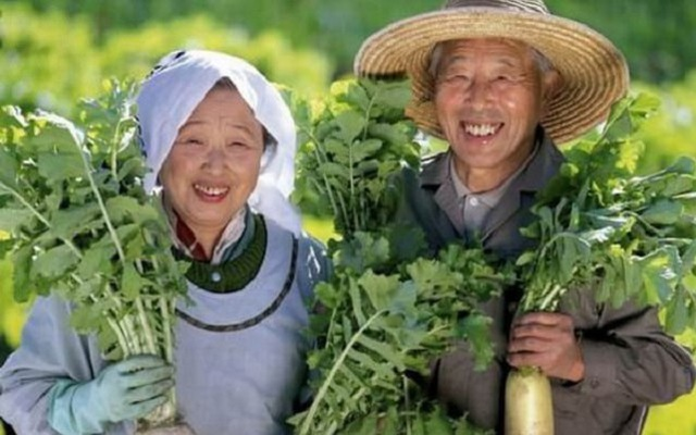 Sống lâu trăm tuổi như người Nhật… không khó - 1
