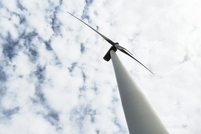 Phát triển du lịch ven biển hút khách ngắm điện gió, xem tôm công nghệ cao - 4