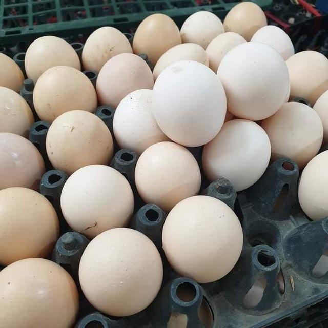 Trứng gà giảm giá kỷ lục, được rao bán la liệt rẻ chưa từng có - 1