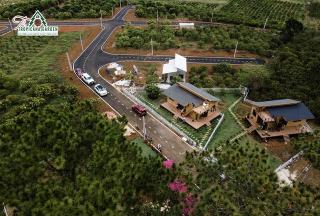 The Tropicana Garden: Cuộc sống thuần khiết giữa đại ngàn - 1