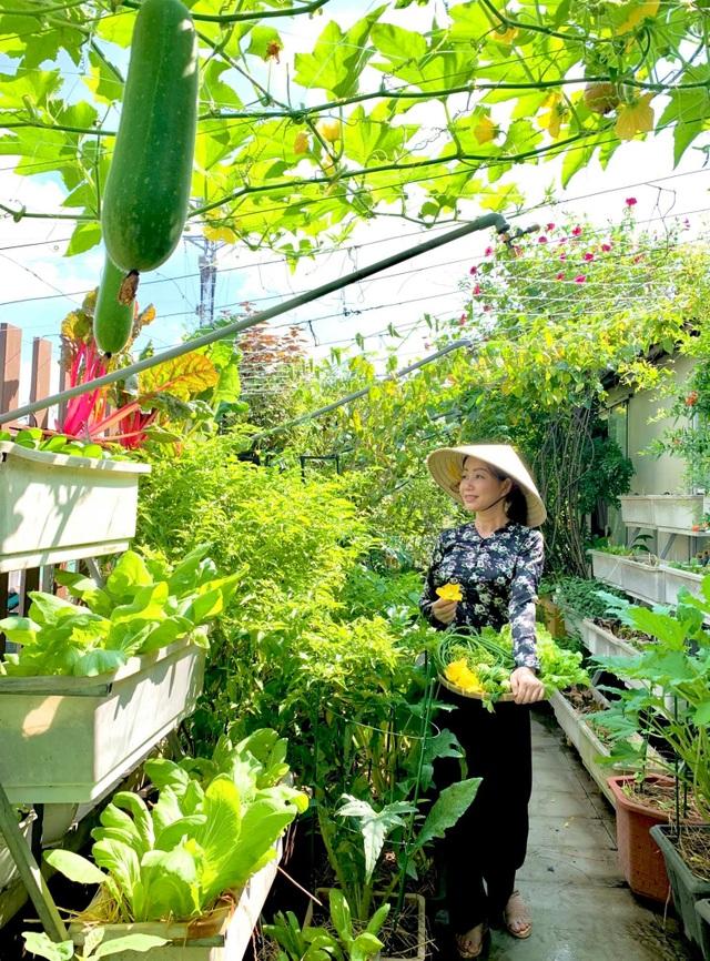 Khu vườn trên không trăm loại rau trái tươi tốt của mẹ đảm Sài Gòn - 12