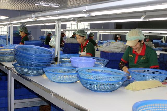 Phú Yên: Hơn 1.600 lao động bị doanh nghiệp, đơn vị trốn đóng BHXH - 1