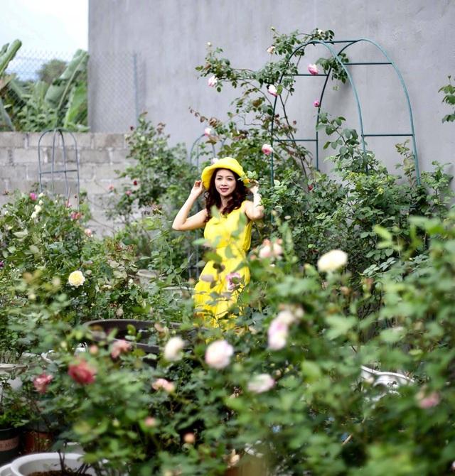 Vườn hồng trăm gốc nhập ngoại quý hiếm của mẹ đảm xinh đẹp ở Hà Giang - 14