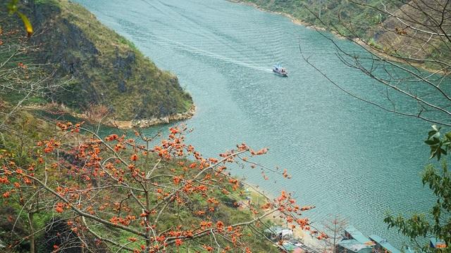 Choáng ngợp vẻ đẹp như tiên cảnh của sông Nho Quế Hà Giang mùa hoa gạo - 5