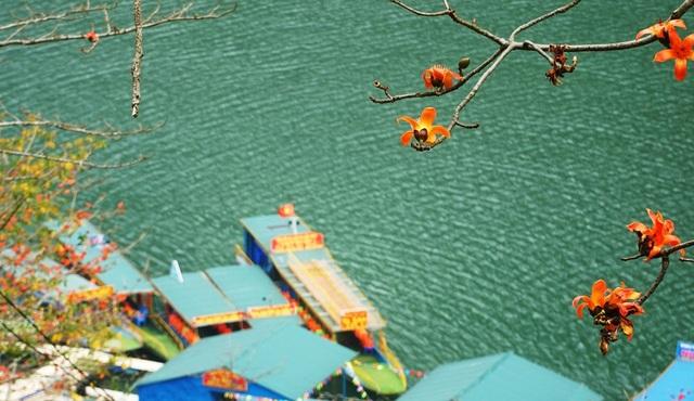Choáng ngợp vẻ đẹp như tiên cảnh của sông Nho Quế Hà Giang mùa hoa gạo - 6