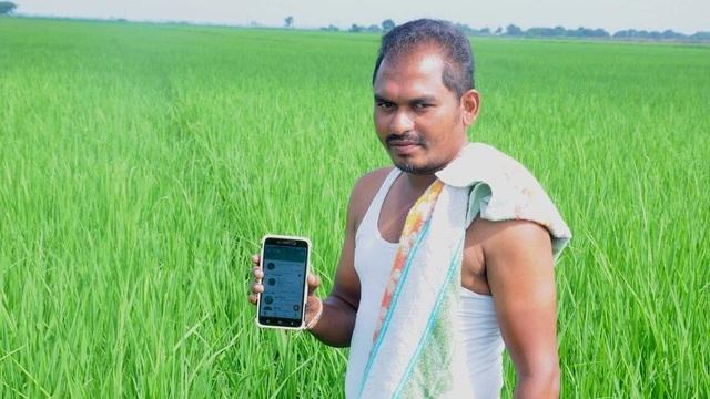 Nông dân thời 4.0: Chụp ảnh rồi bắt sâu bằng… điện thoại di động - 1