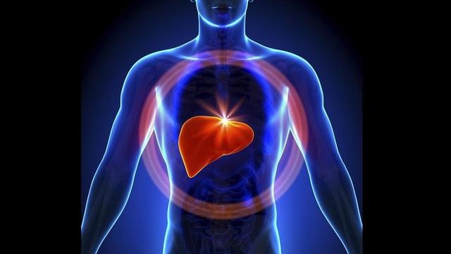 Bí quyết dưỡng gan siêu rẻ nhưng lại rất hiệu quả - 1