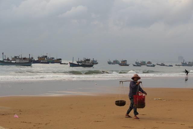Phú Yên: Tất bật mưu sinh trong buổi sáng sớm ở làng chài ven biển - 1