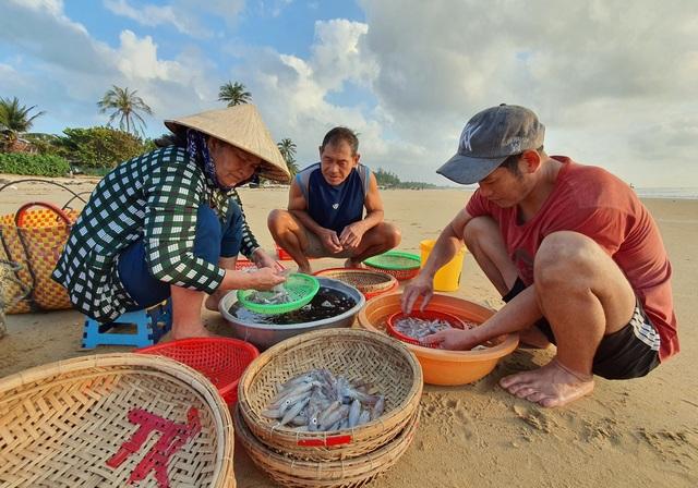 Phú Yên: Tất bật mưu sinh trong buổi sáng sớm ở làng chài ven biển - 4