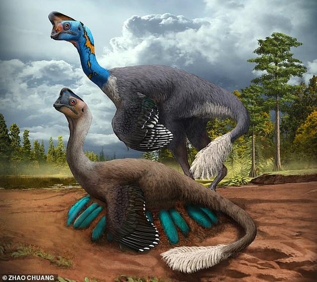 Tìm thấy hóa thạch khủng long mẹ đang ấp trứng - 1