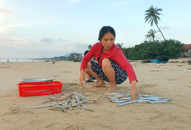 Phú Yên: Tất bật mưu sinh trong buổi sáng sớm ở làng chài ven biển - 8