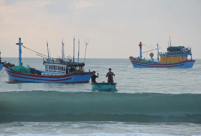 Phú Yên: Tất bật mưu sinh trong buổi sáng sớm ở làng chài ven biển - 2