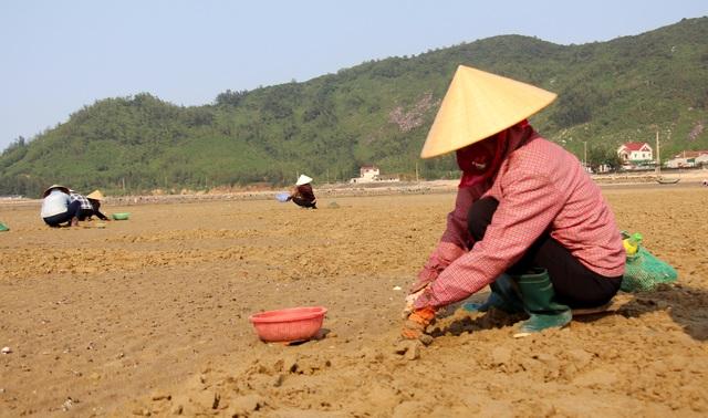 Nhọc nhằn nghề bới cát tìm con sò - 1