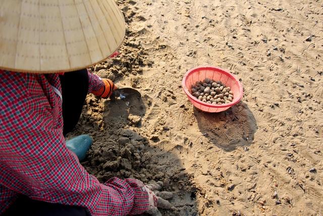 Nhọc nhằn nghề bới cát tìm con sò - 2