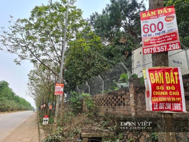 Giá đất vùng ven Hà Nội dựng đứng: Quán bán gà, vịt thành trung tâm tư vấn đất đai - 2