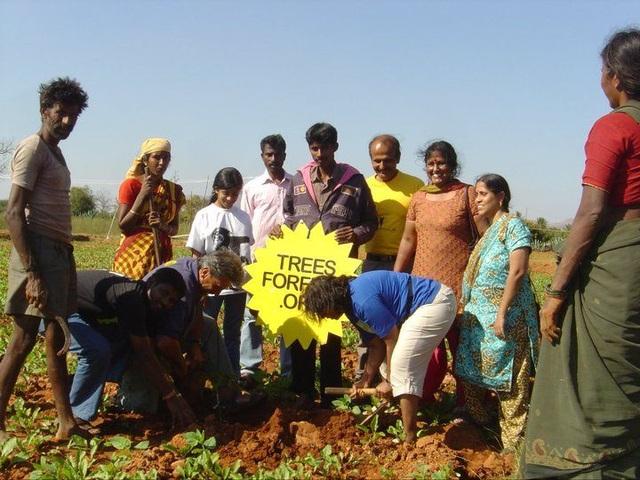 Ngưỡng mộ người phụ nữ trồng hơn 73.000 cây phủ xanh nơi mình sống - 2
