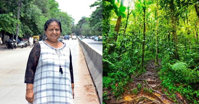 Ngưỡng mộ người phụ nữ trồng hơn 73.000 cây phủ xanh nơi mình sống - 3