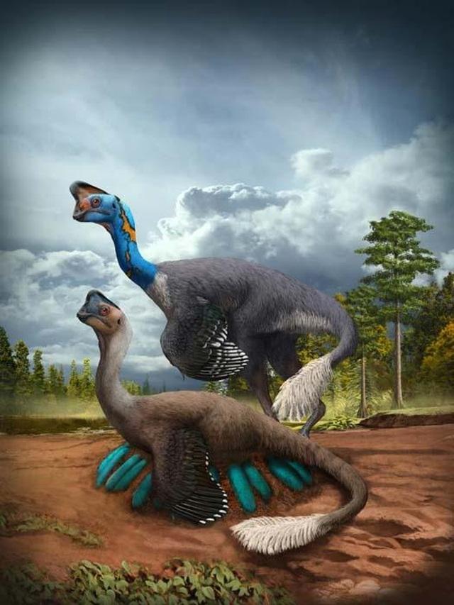 Tìm thấy hóa thạch khủng long và trứng còn nguyên phôi - 2