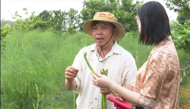 Ông Nguyễn Quang Trung - Giám đốc HTX nông nghiệp Tây Hiếu cho biết: