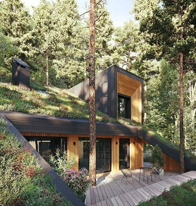 Mát mắt với những căn nhà siêu xanh từ rừng sâu tới giữa đô thị - 1