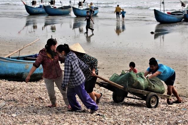 Mỗi thuyền ra khơi đánh ghẹ, tôm, mực, cá... ngư dân sử dụng 2 - 3 bọc lưới. Khi thuyền tiến ra biển thì lưới cũng sẽ được thả xuống biển và sau khi hết lưới thì quay lại để thu gom để sớm trở về bờ. Những bọc lưới được đưa xuống xe kéo chở về với đủ loại hải sản. Tuy nhiên, trong đó phần lớn là mực và cá trích luôn là những hải sản được mùa., cho thu nhập cao.