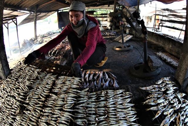 trong đó, đi lộng được mùa cá trích. Ngư dân vùng biển Quỳnh cho biết, mỗi ngày họ thu về khoảng 500 ngàn đồng, đến 1 triệu đồng sau mỗi chuyến ra khơi vài ba tiếng đồng hồ.
