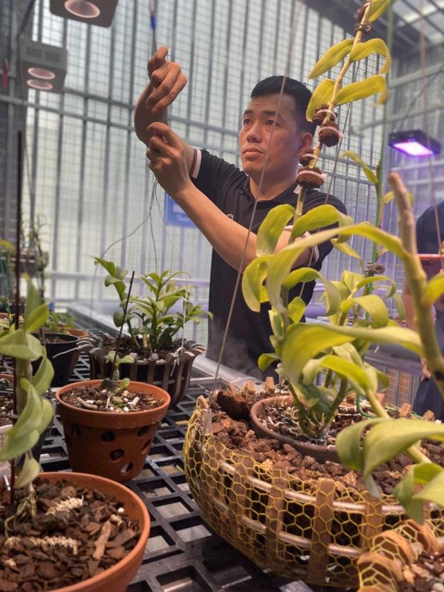 Nghệ nhân Nguyễn Duy Tân chia sẻ bí quyết trồng hoa lan thành công - 2