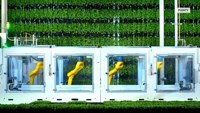 Ngỡ ngàng với trang trại thẳng đứng, robot thoăn thoắt trồng cây - 2