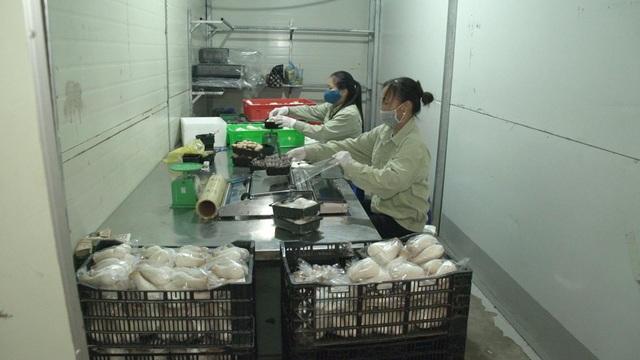Bỏ ngang đại học đi trồng nấm, đại gia nông dân thu gần 40 tỷ đồng/năm - 5