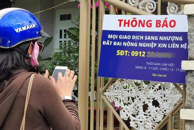 Phú Yên: Rộ tình trạng thu gom đất lúa ở vùng ven thành phố - 1