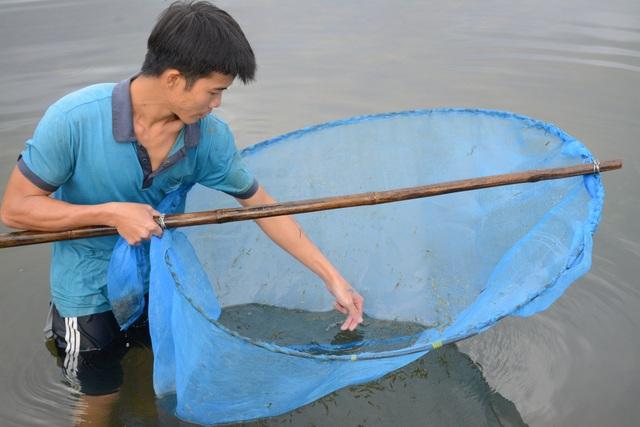 Quảng Nam: Kiếm tiền từ cách bắt tép độc chiêu ở hồ Phú Ninh - 5