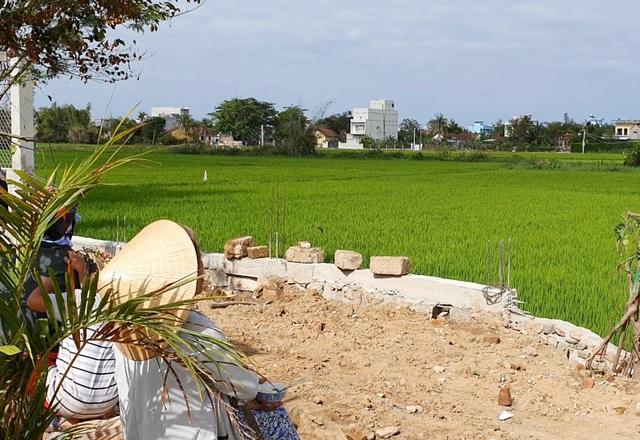 Phú Yên: Rộ tình trạng thu gom đất lúa ở vùng ven thành phố - 3