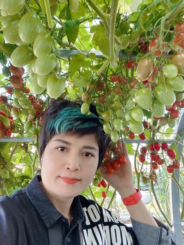 Khu vườn trên mây ở Quảng Nam: Cà chua, bí ngô lúc lỉu trên mái nhà - 3