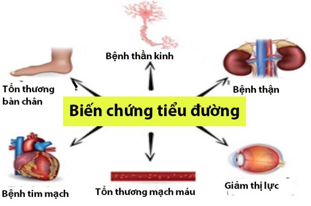 Bí quyết của người bệnh tiểu đường từ phức hợp: hoa hòe - nghệ - mã đề - 2