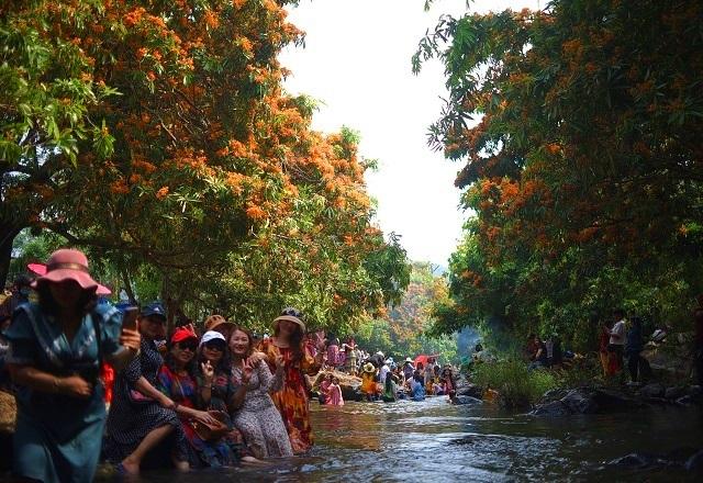 Hàng ngàn người rồng rắn ngắm loài hoa đặc biệt mọc ven suối ở Bình Định  - 8