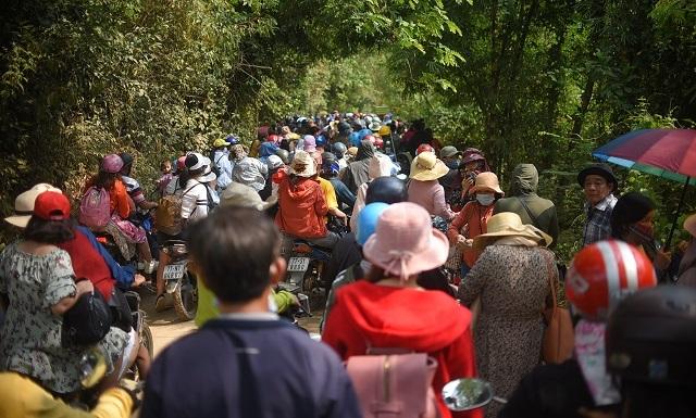 Hàng ngàn người rồng rắn ngắm loài hoa đặc biệt mọc ven suối ở Bình Định  - 1