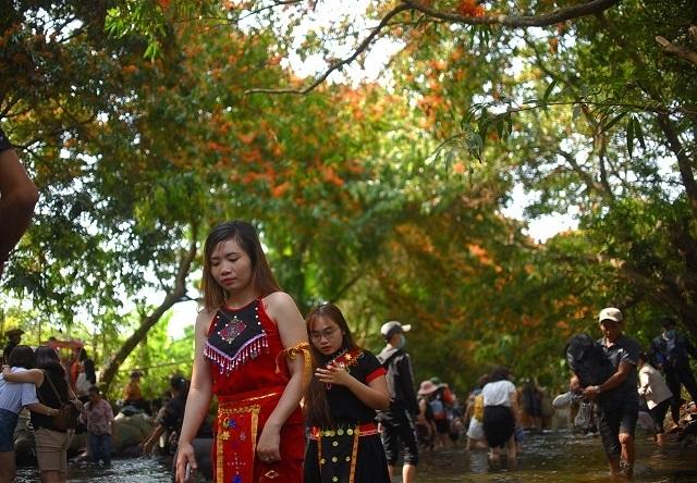 Hàng ngàn người rồng rắn ngắm loài hoa đặc biệt mọc ven suối ở Bình Định  - 10