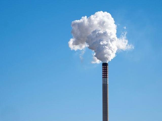 Ô nhiễm môi trường có thể làm giảm kích thước cậu nhỏ - 1