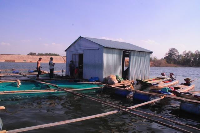 Chông chênh cuộc sống mưu sinh ở lòng hồ thủy lợi - 7