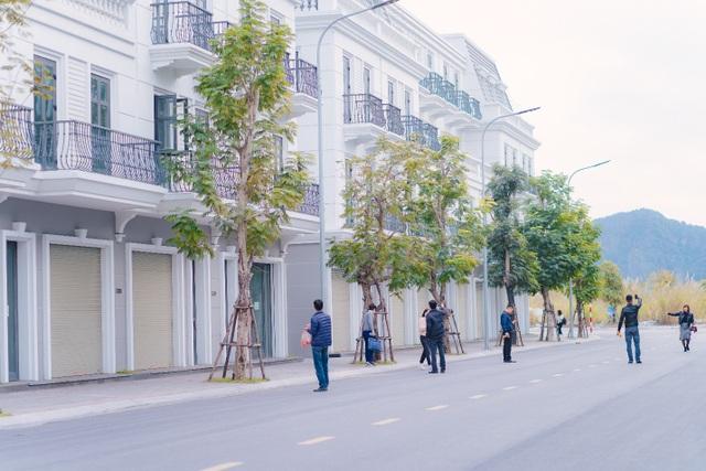 Cẩm Phả: Hàng loạt siêu dự án ra mắt, BĐS vùng phụ trợ tăng nhiệt - 3
